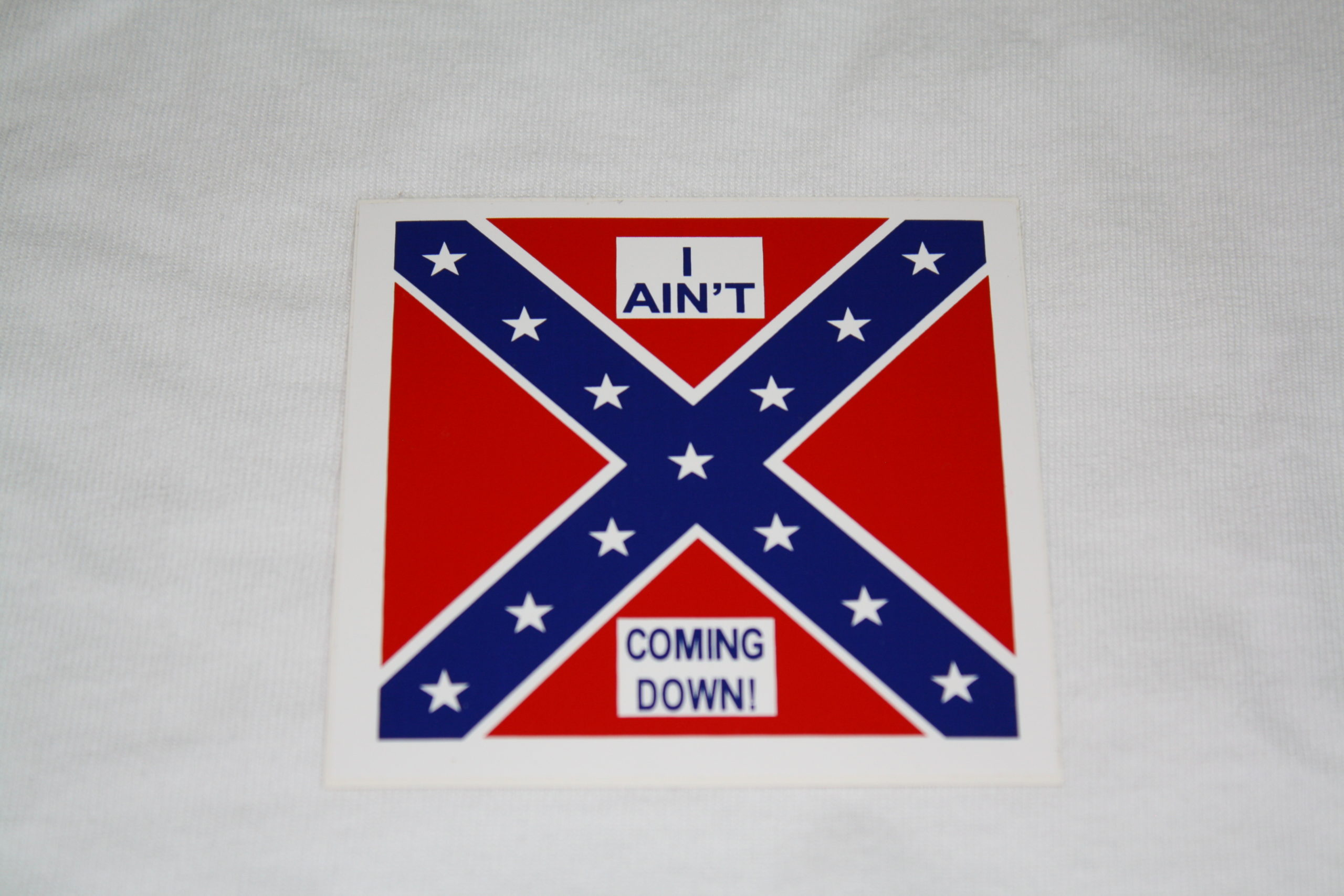 I Ain't Coming Down - Small Sticker