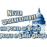 Never Underestimate the Power of Stupid People in Large Group