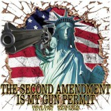 The 2nd Amendment is My Gun Permit - T-shirt