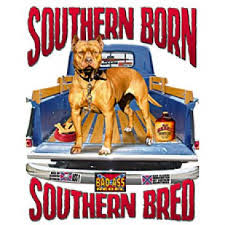 Southern Born / Southern Bred - T-shirt