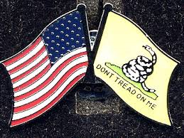 American Flag / Don't Tread on Me Pin